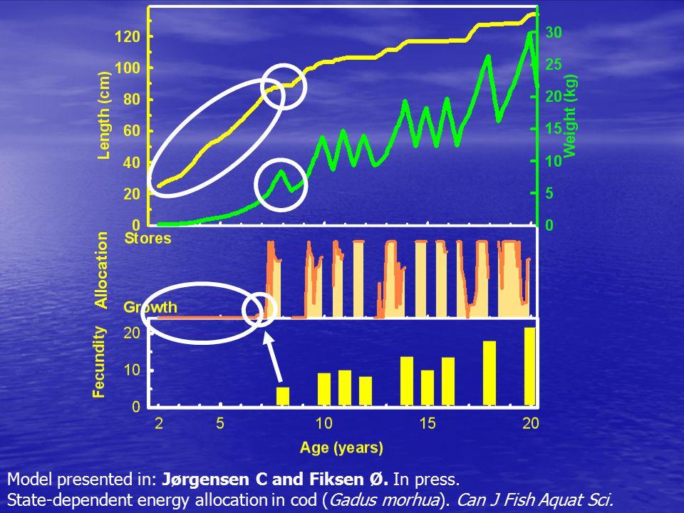 Allocation Model presented in: Jørgensen C and Fiksen Ø.
