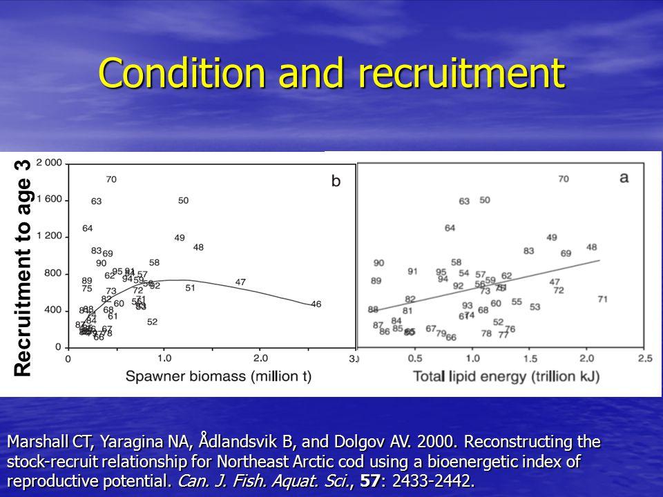 Condition and recruitment Recruitment to age 3 Marshall CT, Yaragina NA, Ådlandsvik B, and Dolgov AV.