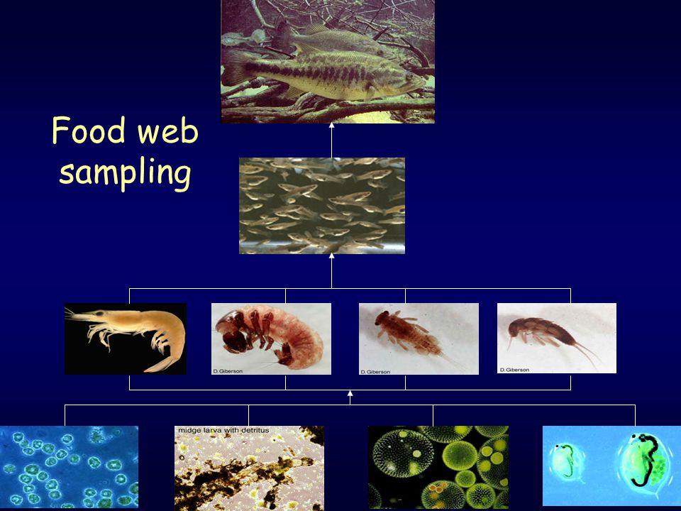 17 Food web sampling