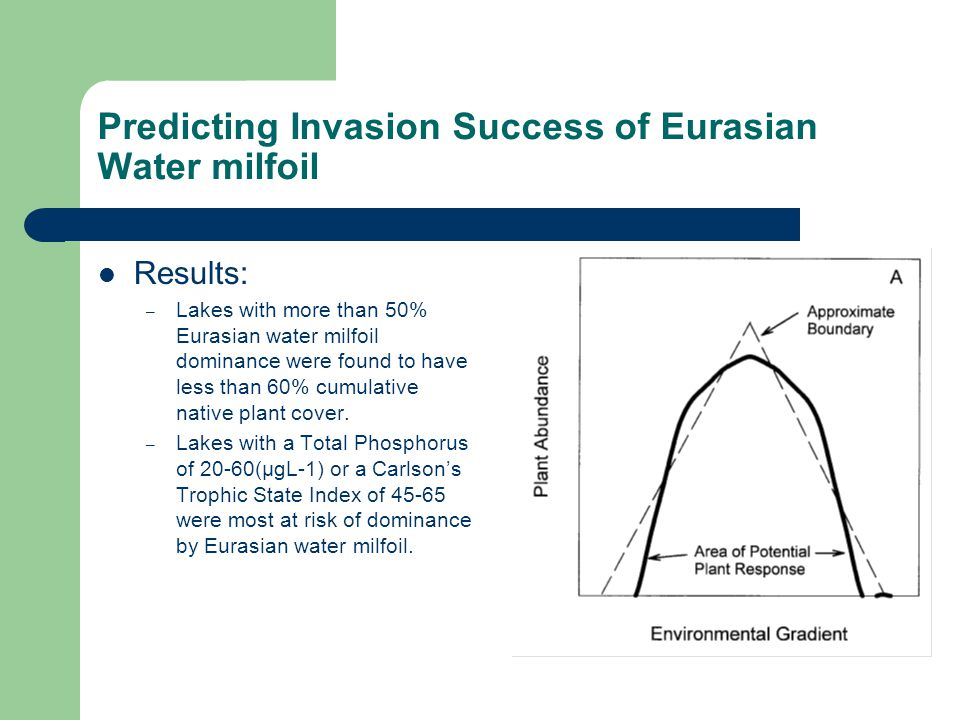 Predicting Invasion Success of Eurasian Water milfoil Results: – Lakes with more than 50% Eurasian water milfoil dominance were found to have less than 60% cumulative native plant cover.