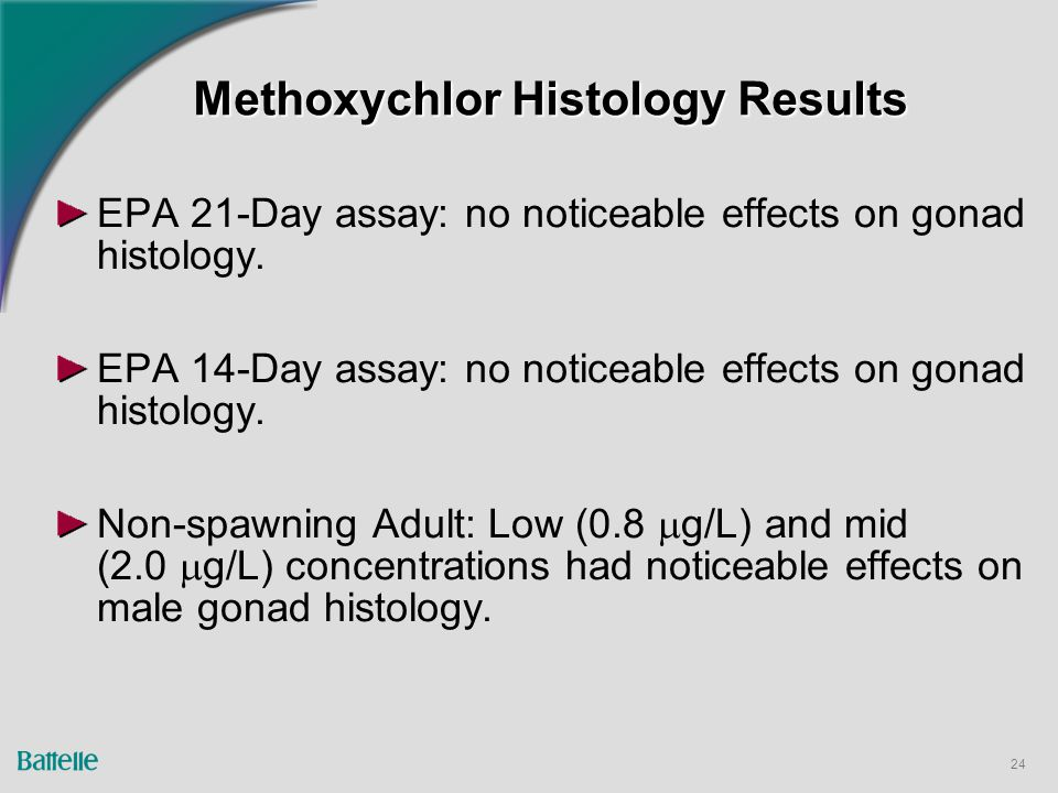 24 Methoxychlor Histology Results EPA 21-Day assay: no noticeable effects on gonad histology.