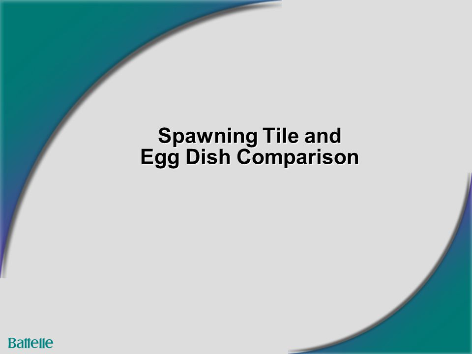 Spawning Tile and Egg Dish Comparison