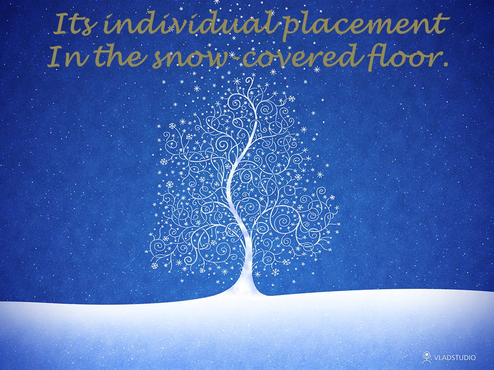 Its individual placement In the snow-covered floor.