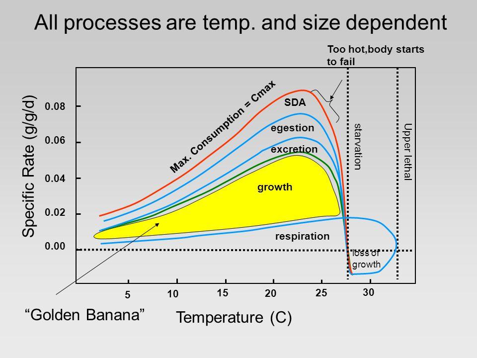 All processes are temp.