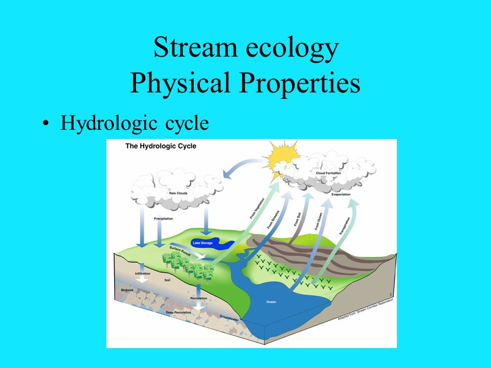 Stream ecology Physical Properties Hydrologic cycle