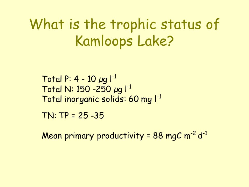 What is the trophic status of Kamloops Lake.