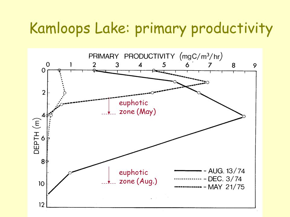 Kamloops Lake: primary productivity euphotic zone (Aug.) euphotic zone (May)