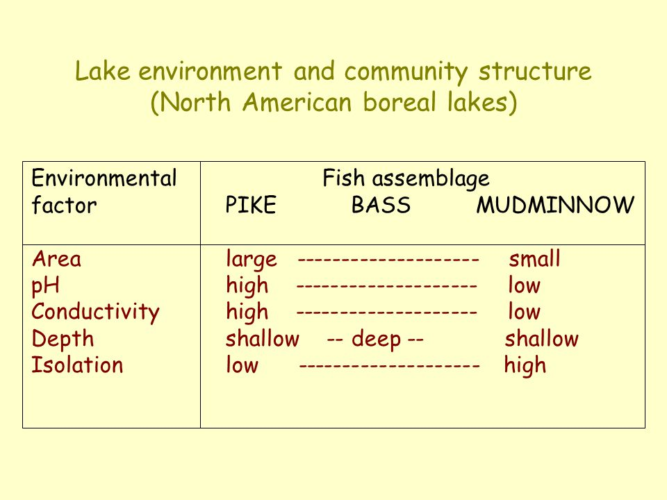 Lake environment and community structure (North American boreal lakes) Environmental Fish assemblage factorPIKEBASSMUDMINNOW Arealarge -------------------- small pHhigh -------------------- low Conductivityhigh -------------------- low Depthshallow -- deep -- shallow Isolationlow -------------------- high