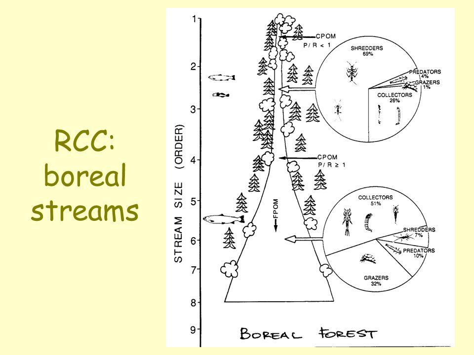 RCC: boreal streams