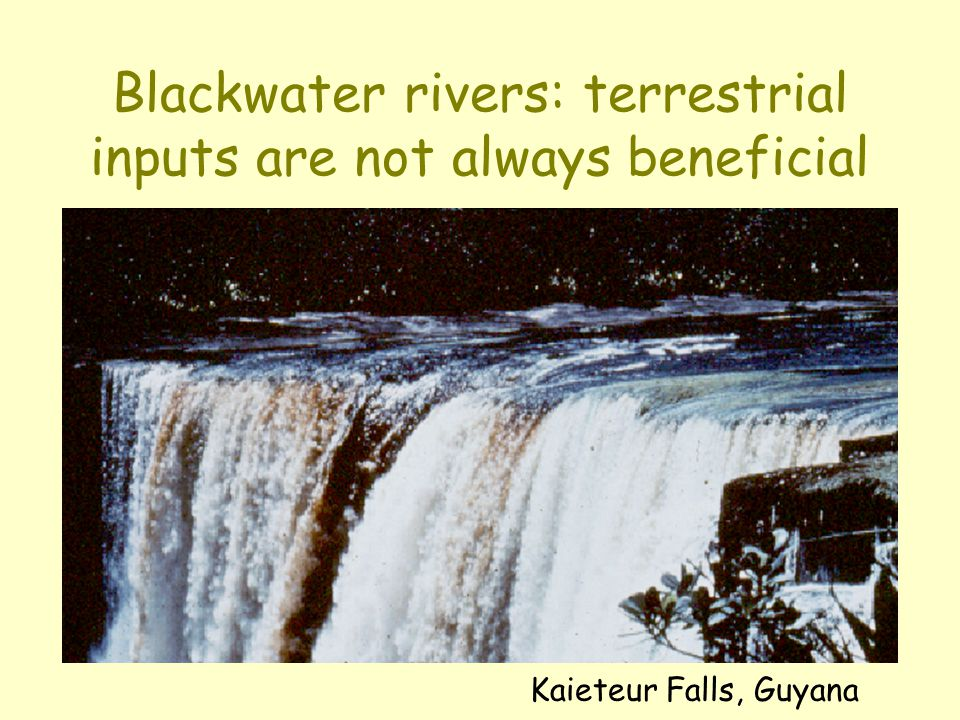 Blackwater rivers: terrestrial inputs are not always beneficial Kaieteur Falls, Guyana