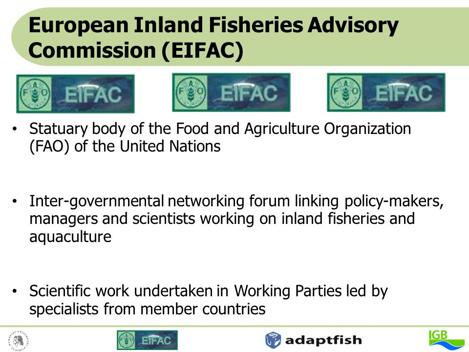 Experts of 17 different nations ranging from mangers, scientists, NGOs and avid anglers collaborated under the leadership of the WP on Recreational Fisheries Consultation workshop in November 2007 at the Dutch Sport Fishing Organization Endorsed in May 2008 by EIFAC The drafting process