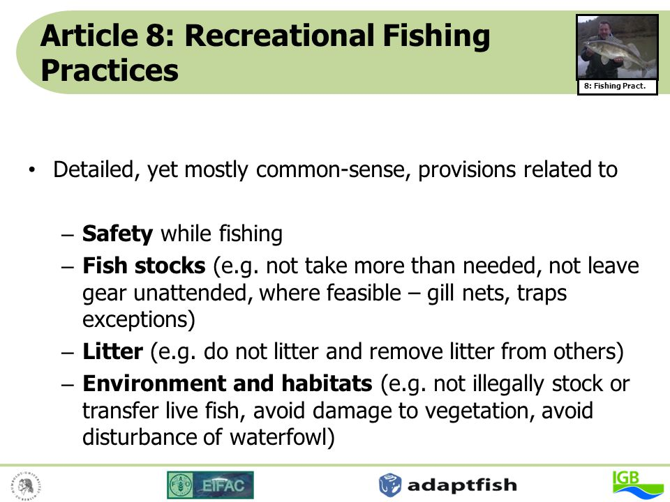 Article 8: Recreational Fishing Practices Detailed, yet mostly common-sense, provisions related to – Safety while fishing – Fish stocks (e.g. not take