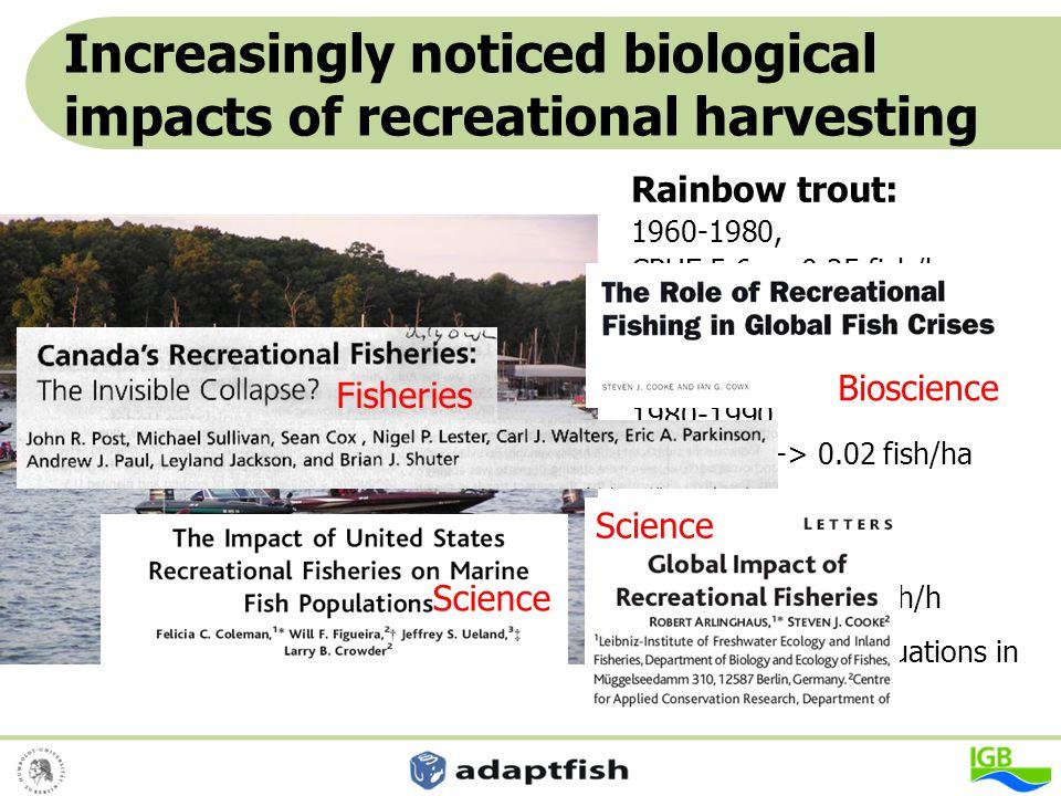 "Changes in structural attributes of the fish stock 23.3 15.3 15.5 5.1 5.5 0 39.5 43.5 25.4 3.4 1.4 0 05101520253035404550 Zreizal Banzao Tablizas Moal Naviego Gedrez Name der Gewässerstrecke in Spanien Prozent am Gesamtfischbestand Brown trout > age 4 Brown trout of ""large size data: Braña et al."