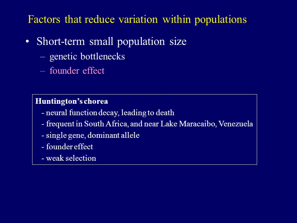 Factors that reduce variation within populations Short-term small population size –genetic bottlenecks –founder effect Huntington's chorea - neural function decay, leading to death - frequent in South Africa, and near Lake Maracaibo, Venezuela - single gene, dominant allele - founder effect - weak selection