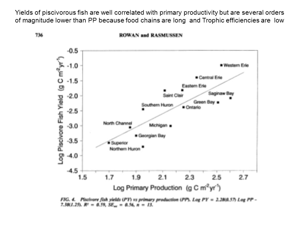 Yields of piscivorous fish are well correlated with primary productivity but are several orders of magnitude lower than PP because food chains are long and Trophic efficiencies are low