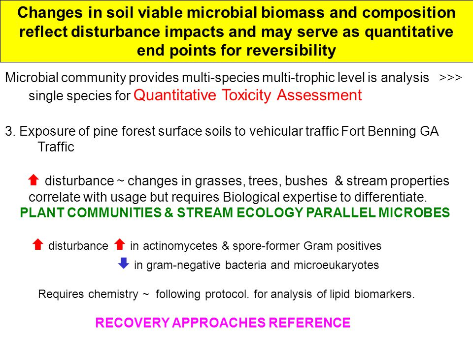 Changes in soil viable microbial biomass and composition reflect disturbance impacts and may serve as quantitative end points for reversibility Microbial community provides multi-species multi-trophic level is analysis >>> single species for Quantitative Toxicity Assessment 3.