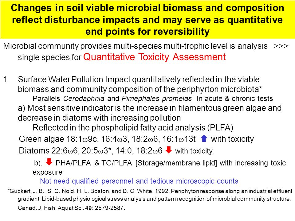 Changes in soil viable microbial biomass and composition reflect disturbance impacts and may serve as quantitative end points for reversibility Microbial community provides multi-species multi-trophic level is analysis >>> single species for Quantitative Toxicity Assessment 1.Surface Water Pollution Impact quantitatively reflected in the viable biomass and community composition of the periphyrton microbiota* Parallels Cerodaphnia and Pimephales promelas In acute & chronic tests a) Most sensitive indicator is the increase in filamentous green algae and decrease in diatoms with increasing pollution Reflected in the phospholipid fatty acid analysis (PLFA) Green algae 18:1  9c, 16:4  3, 18:2  6, 16:1  13t  with toxicity Diatoms 22:6  6, 20:5  3*, 14:0, 18:2  6  with toxicity.