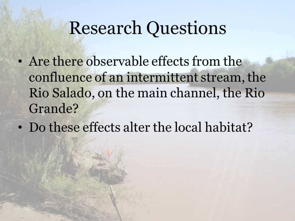 Research Questions Are there observable effects from the confluence of an intermittent stream, the Rio Salado, on the main channel, the Rio Grande.