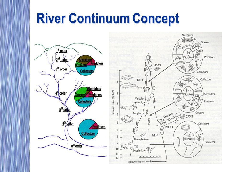 River Continuum Concept
