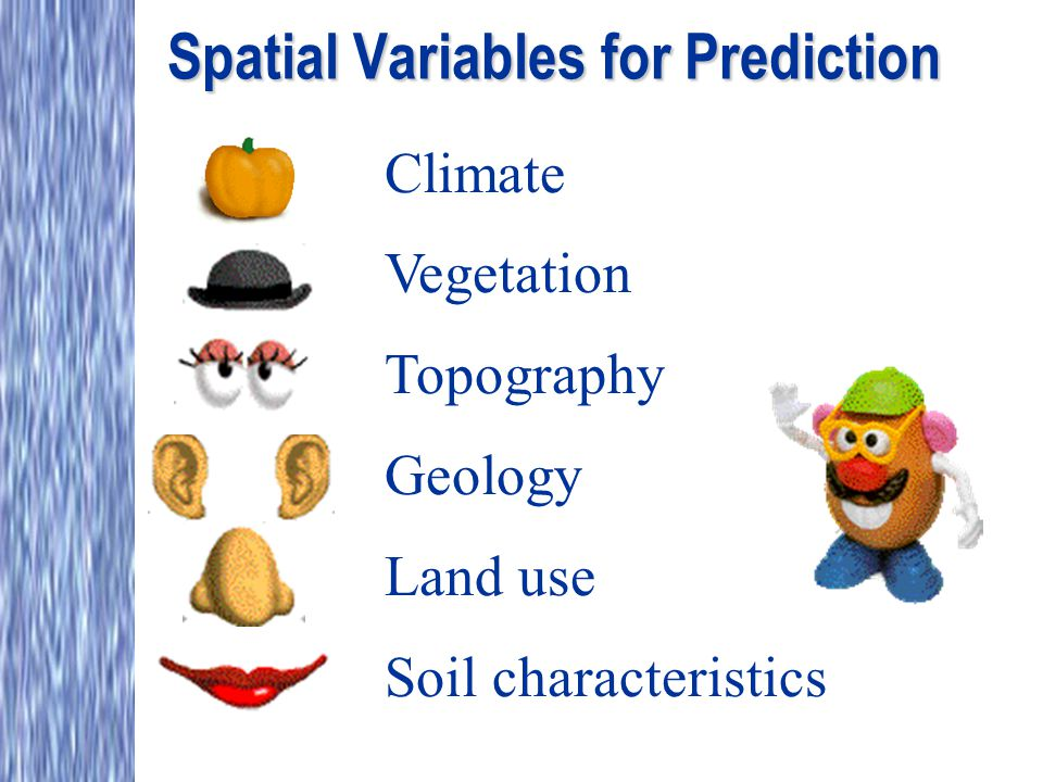 Spatial Variables for Prediction Climate Vegetation Topography Geology Land use Soil characteristics