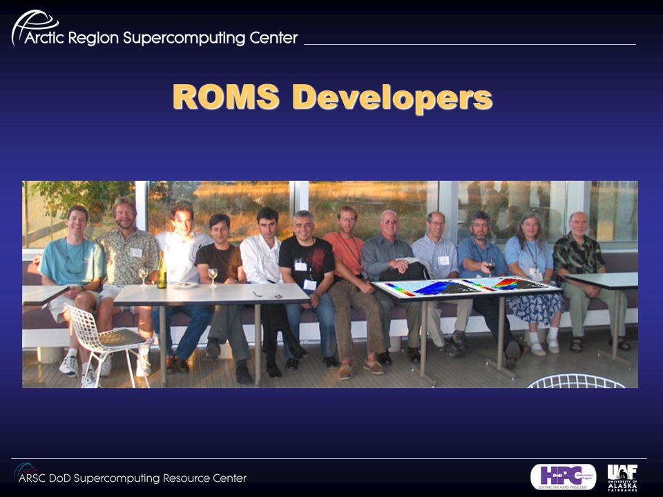 ROMS Developers