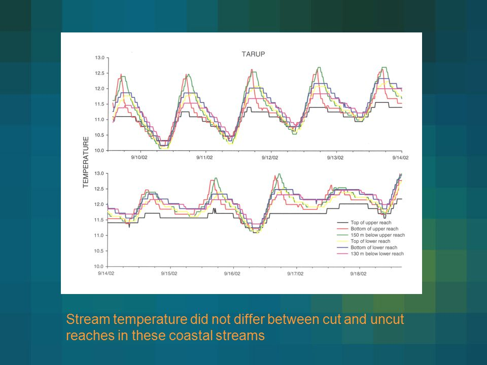 Stream temperature did not differ between cut and uncut reaches in these coastal streams