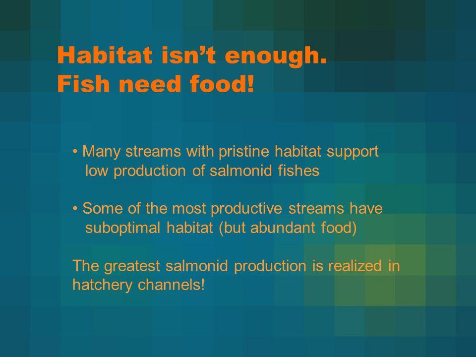 Habitat isn't enough. Fish need food.