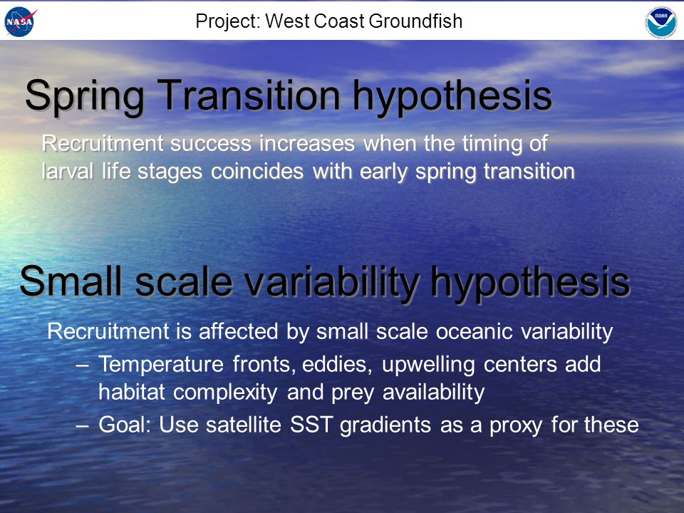Earlier ST linked to higher recruitment, but not significant Spring Transition hypothesis Small scale variability hypothesis Higher recruitment linked to higher front probability, but not significant Average frontal probability Log(recruitment deviations) Project: West Coast Groundfish