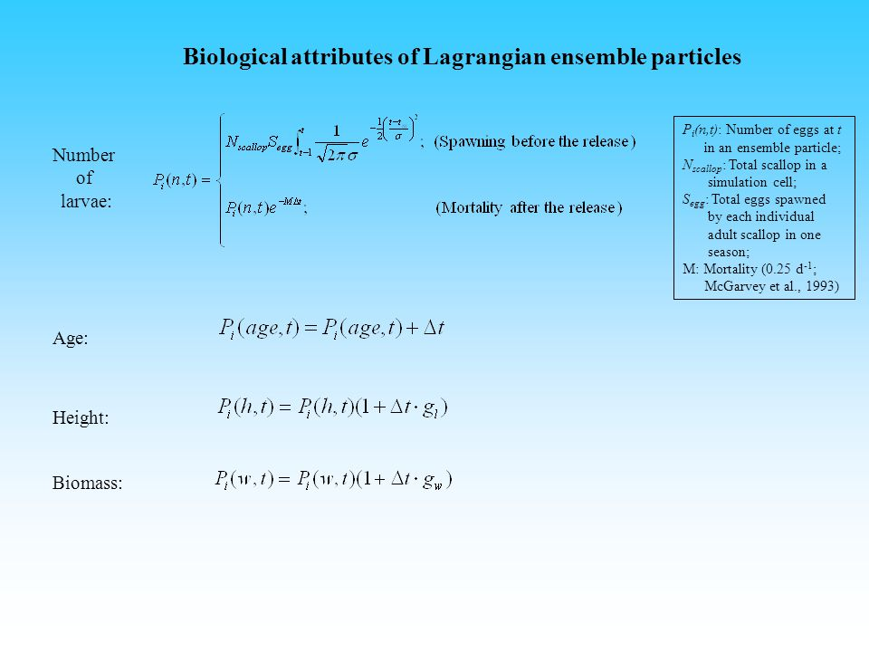 Biological attributes of Lagrangian ensemble particles Number of larvae: Age: Height: P i (n,t): Number of eggs at t in an ensemble particle; N scallop : Total scallop in a simulation cell; S egg : Total eggs spawned by each individual adult scallop in one season; M: Mortality (0.25 d -1 ; McGarvey et al., 1993) Biomass:
