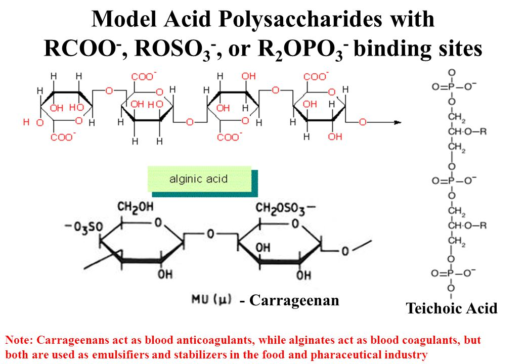 Model Acid Polysaccharides with RCOO -, ROSO 3 -, or R 2 OPO 3 - binding sites - Carrageenan Teichoic Acid Note: Carrageenans act as blood anticoagulants, while alginates act as blood coagulants, but both are used as emulsifiers and stabilizers in the food and pharaceutical industry