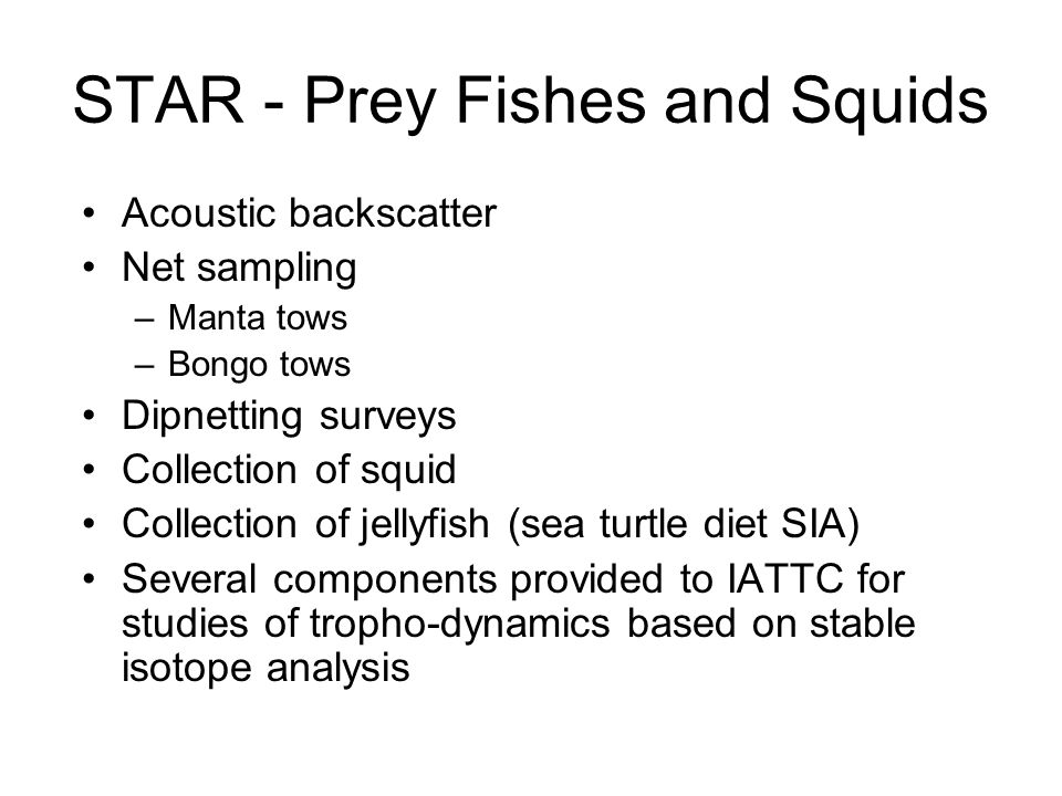 STAR - Prey Fishes and Squids Acoustic backscatter Net sampling –Manta tows –Bongo tows Dipnetting surveys Collection of squid Collection of jellyfish (sea turtle diet SIA) Several components provided to IATTC for studies of tropho-dynamics based on stable isotope analysis