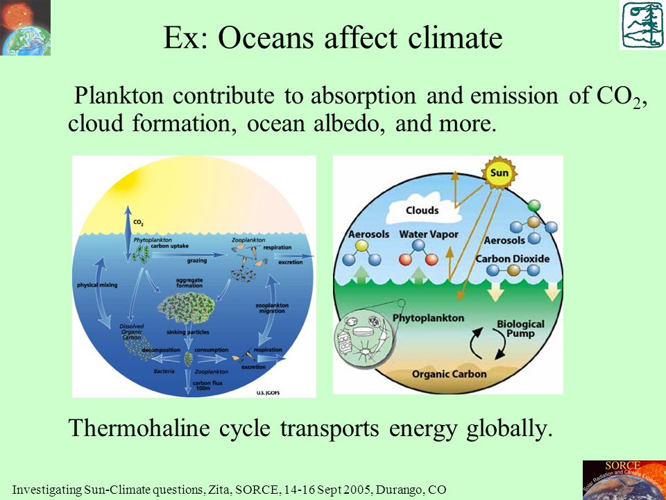 Ex: Oceans affect climate Plankton contribute to absorption and emission of CO 2, cloud formation, ocean albedo, and more. Thermohaline cycle transpor