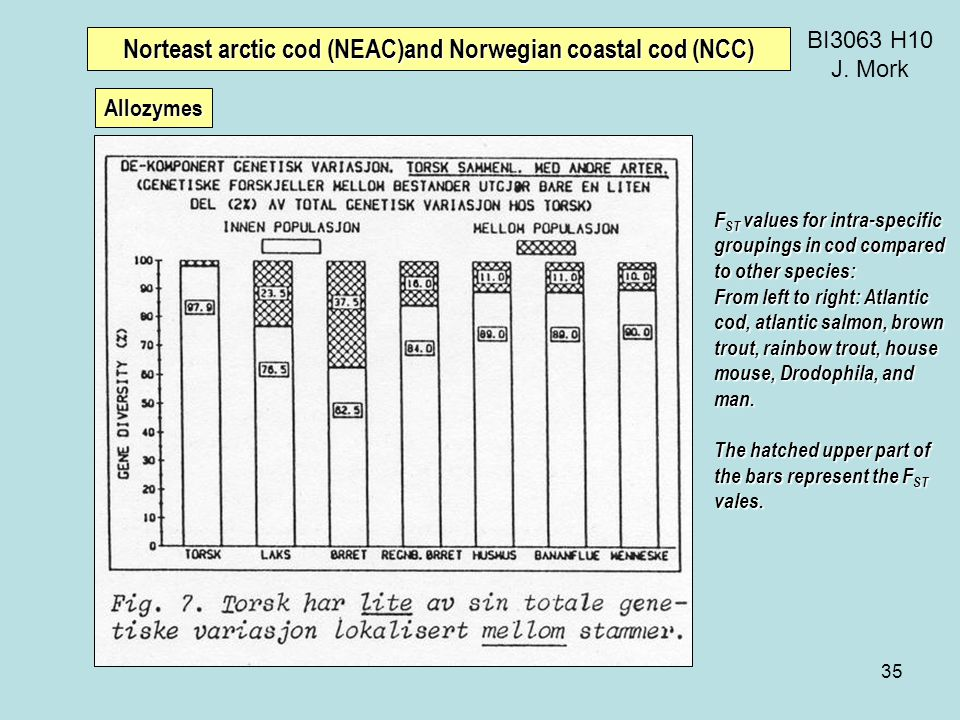 35 BI3063 H10 J. Mork Norteast arctic cod (NEAC)and Norwegian coastal cod (NCC) F ST values for intra-specific groupings in cod compared to other spec