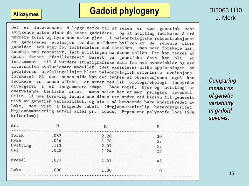 45 BI3063 H10 J. Mork Gadoid phylogeny Comparingmeasures of genetic variability in gadoid species.