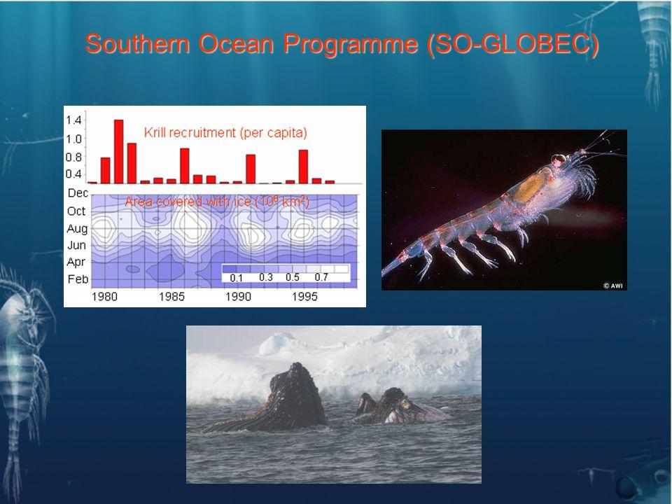 Southern Ocean Programme (SO-GLOBEC)