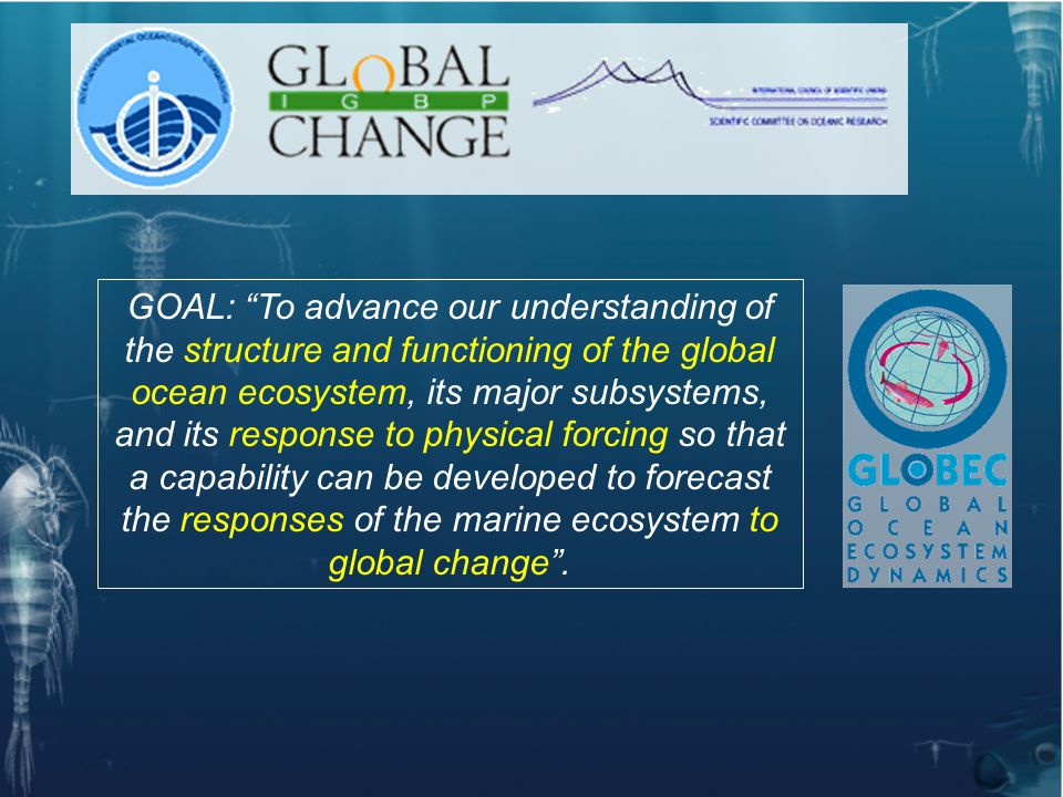 GLOBEC's Objectives: 1- To better understand how multiscale physical- environmental processes force large-scale changes in marine ecosystems 2- To determine the relationship between structure and dynamics in a variety of oceanic systems which typify significant components of the global ocean ecosystem 4- To determine how changing marine ecosystems will affect the global earth system by identifying and quantifying feedback mechanisms 3- To determine the impacts of global change on stock dynamics using coupled physical, chemical and biological models linked to appropriate observation systems