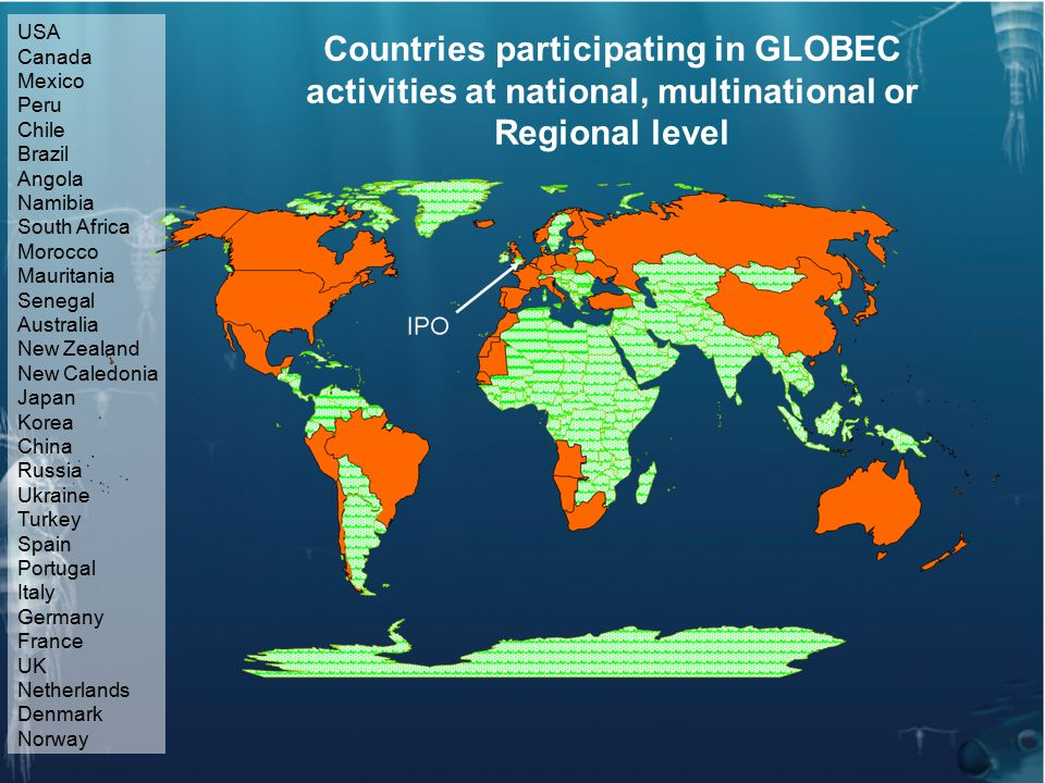 USA Canada Mexico Peru Chile Brazil Angola Namibia South Africa Morocco Mauritania Senegal Australia New Zealand New Caledonia Japan Korea China Russia Ukraine Turkey Spain Portugal Italy Germany France UK Netherlands Denmark Norway Countries participating in GLOBEC activities at national, multinational or Regional level