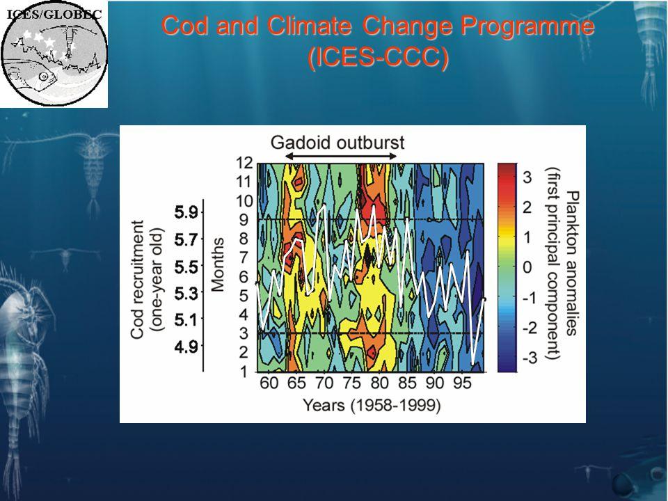 Theme 4: Economic Implications of Climate Change.