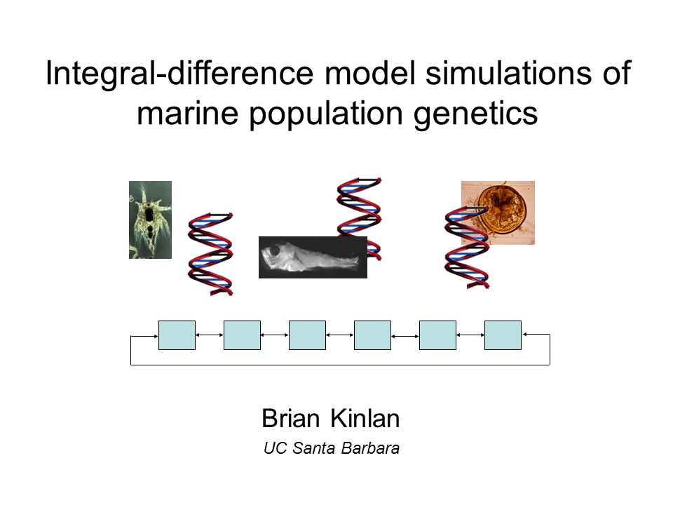 Brian Kinlan UC Santa Barbara Integral-difference model simulations of marine population genetics