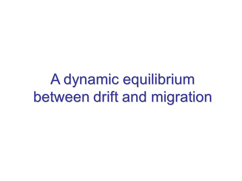 A dynamic equilibrium between drift and migration