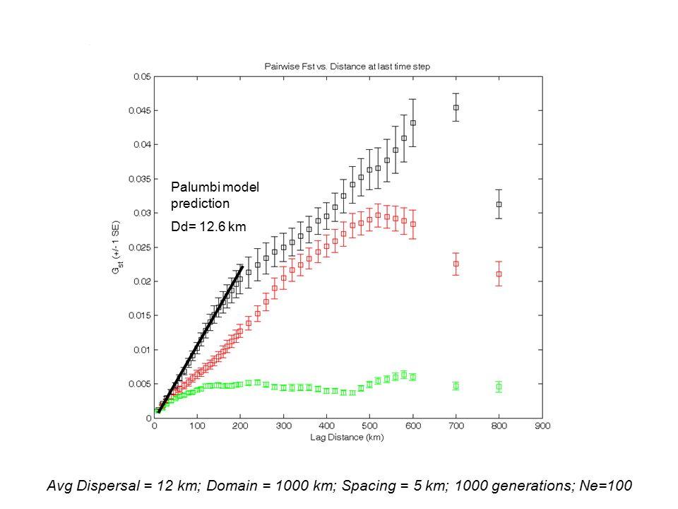 Avg Dispersal = 12 km; Domain = 1000 km; Spacing = 5 km; 1000 generations; Ne=100 Palumbi model prediction Dd= 12.6 km