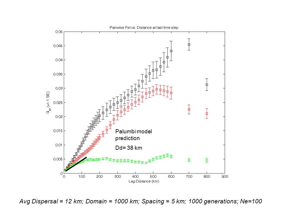 Avg Dispersal = 12 km; Domain = 1000 km; Spacing = 5 km; 1000 generations; Ne=100 Palumbi model prediction Dd= 38 km