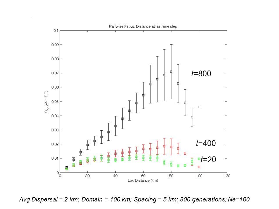 Avg Dispersal = 2 km; Domain = 100 km; Spacing = 5 km; 800 generations; Ne=100 t=20 t=400 t=800