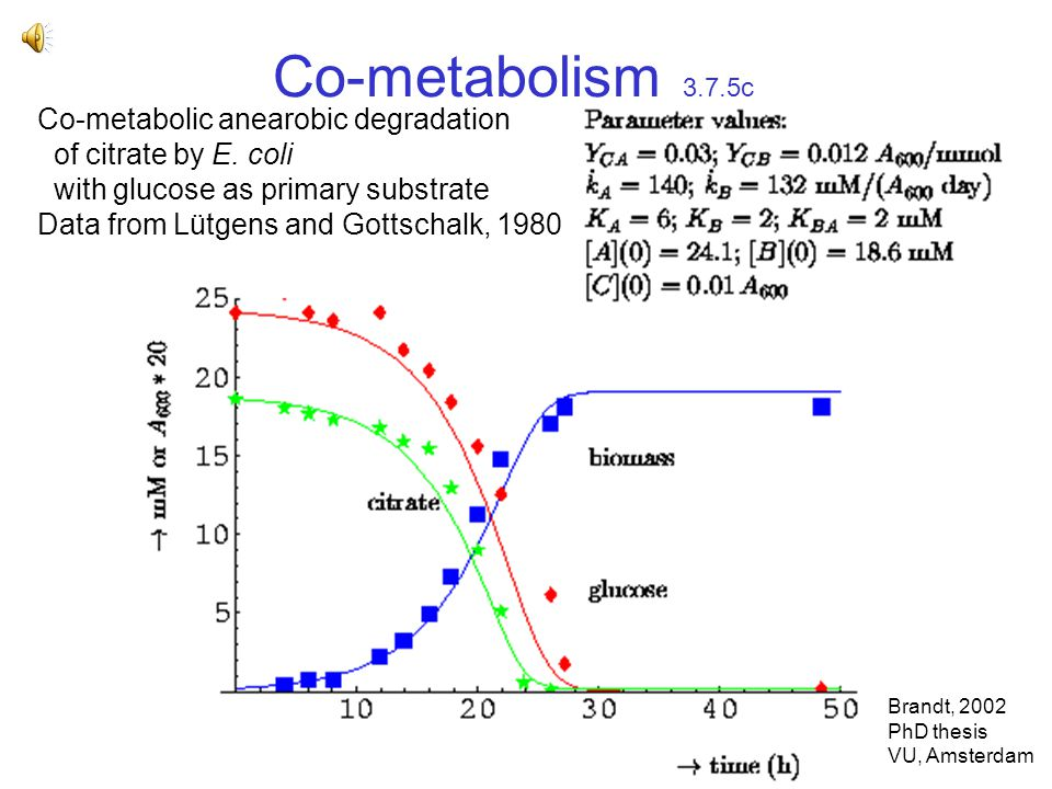 Co-metabolism 3.7.5c Co-metabolic anearobic degradation of citrate by E.