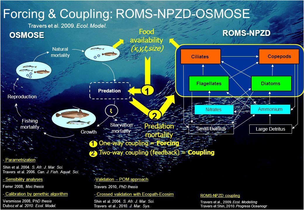 Forcing & Coupling: ROMS-NPZD-OSMOSE Travers et al.