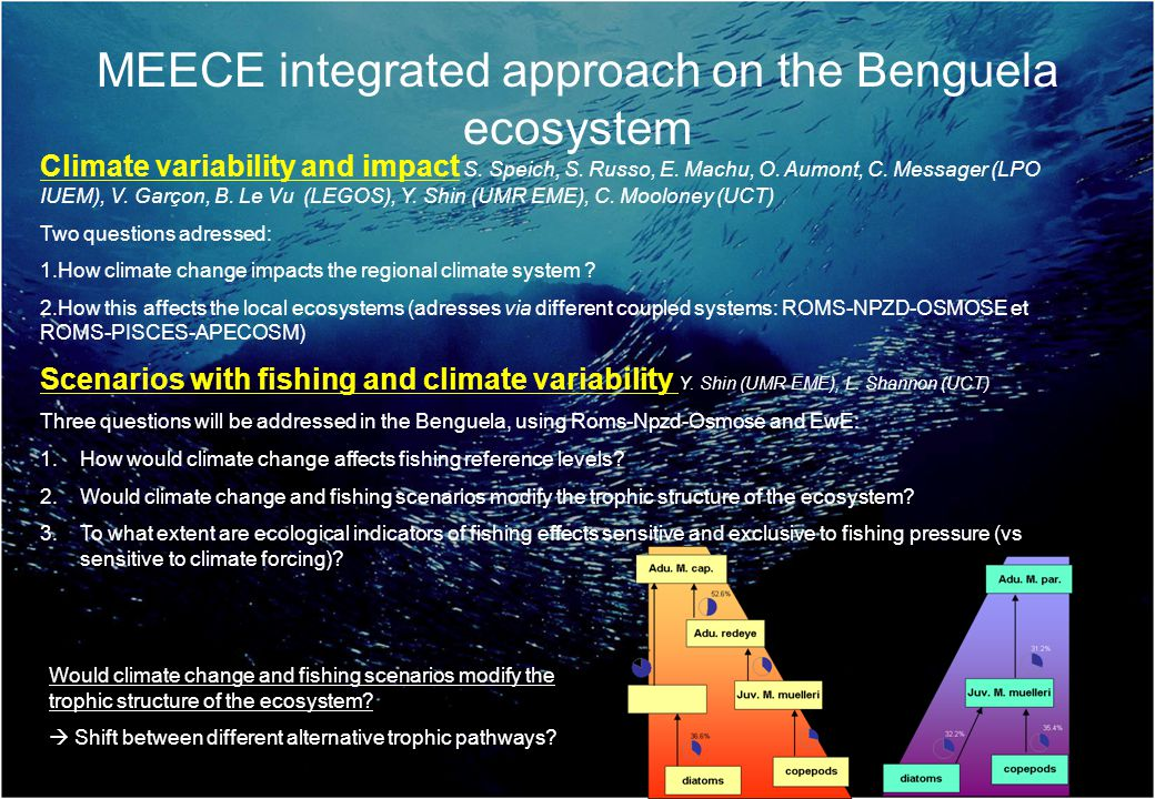 Scenarios with fishing and climate variability Y. Shin (UMR EME), L.