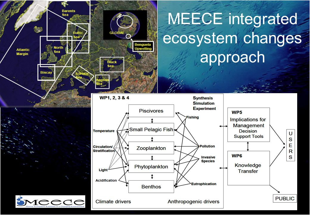 MEECE integrated ecosystem changes approach