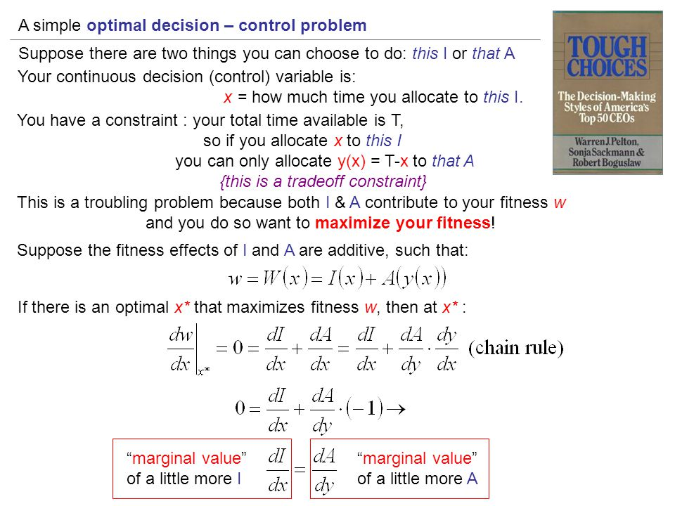 A simple optimal decision – control problem Suppose there are two things you can choose to do: this I or that A Your continuous decision (control) var