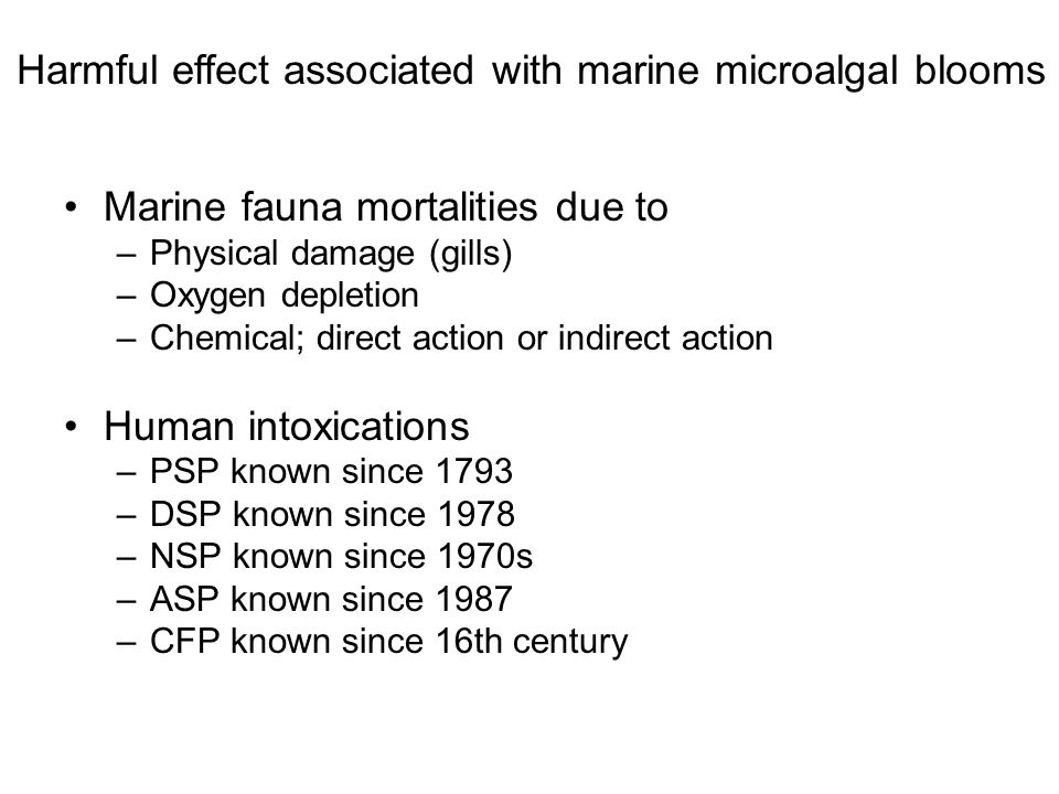 Marine fauna mortalities due to –Physical damage (gills) –Oxygen depletion –Chemical; direct action or indirect action Human intoxications –PSP known