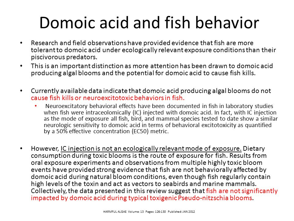 Domoic acid and fish behavior Research and field observations have provided evidence that fish are more tolerant to domoic acid under ecologically rel